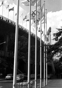 1964年10月 国立競技場3.jpg