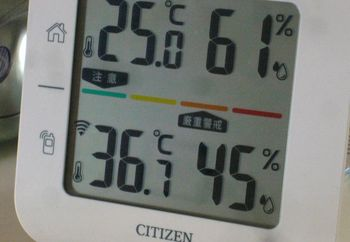 2016.7気温.jpg