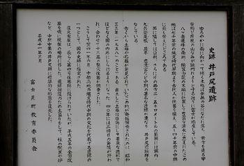 2016.7花各種10.jpg