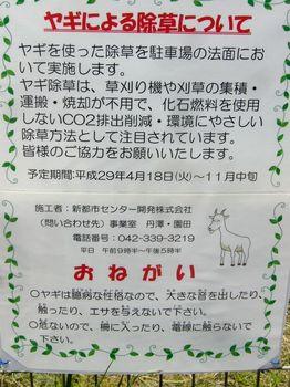 2017.5お出かけ3.jpg
