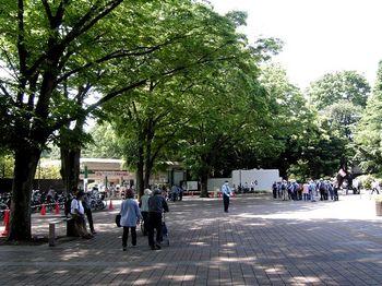 2017.5神代植物園2.jpg