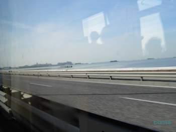 リベルタ橋 バス.jpg